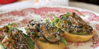 Mushroom-Ragout-Recipe