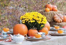 Pumpkin Patch Tea