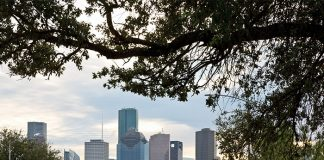 Afternoon Tea in Houston