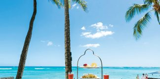 The Tea Experience:Afternoon Tea on Waikiki