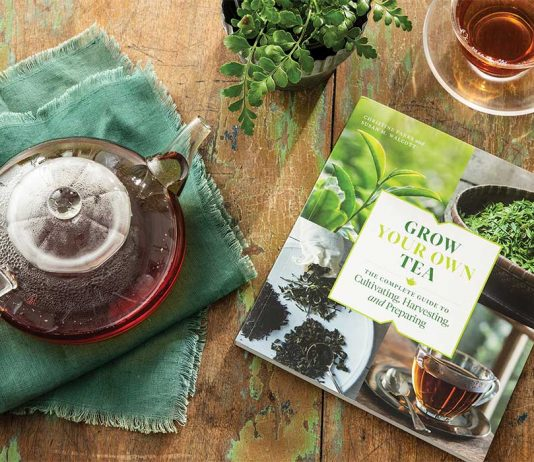 Win an Exclusive Copy of Grow Your Own Tea