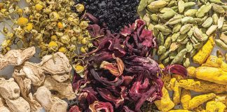Seven Healthy Botanicals